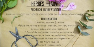 herbesfauves-fleuriste-bordeaux-mariage-wedding-stage-annonce-stagiaire